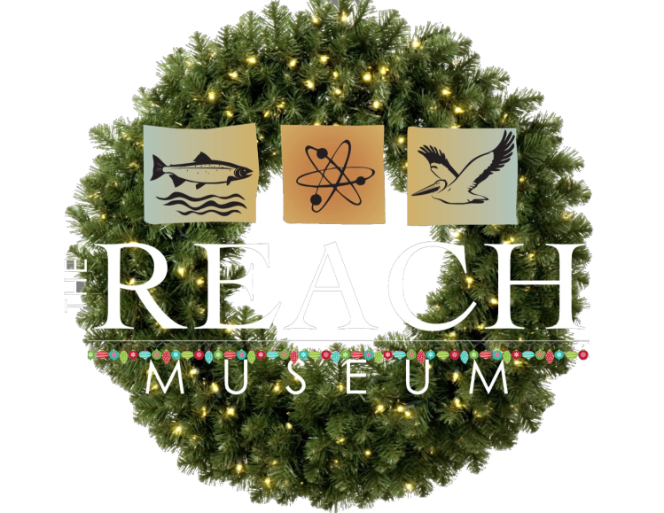 holiday reach logo2
